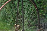 "Unknown High wheel., England 48"" – c.1885"