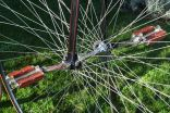 "Měsíček Race High wheel 54"" – replica"