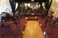 9/G. VELORAMA - tricycles and quadricycles, Nijmegen – Netherlands